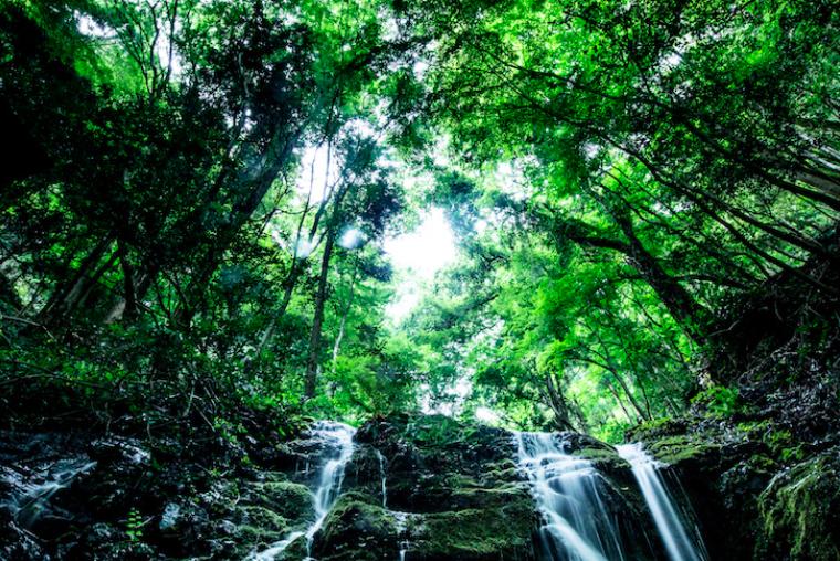 メディソル社工場近くの滝の様子。息をのむような美しい光景が広がる (写真提供:メディソル株式会社)